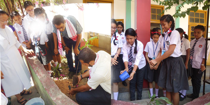 World Environment Day - St. Joseph, Tezpur